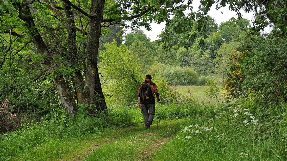 Wandern ist eine Tätigkeit der Beine – und ein Zustand der Seele