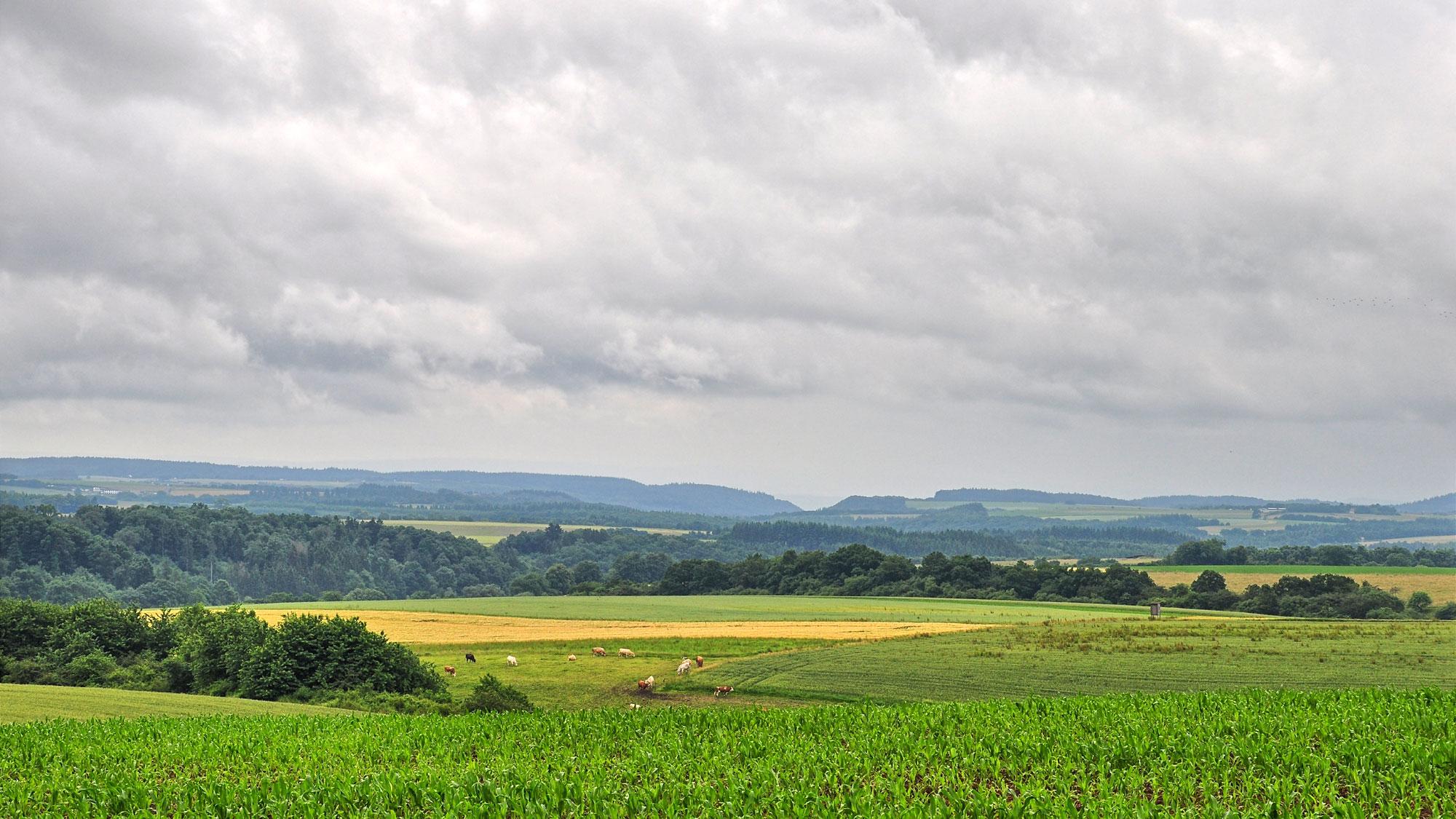 Vom Pulvermaar zum Tiefenbach