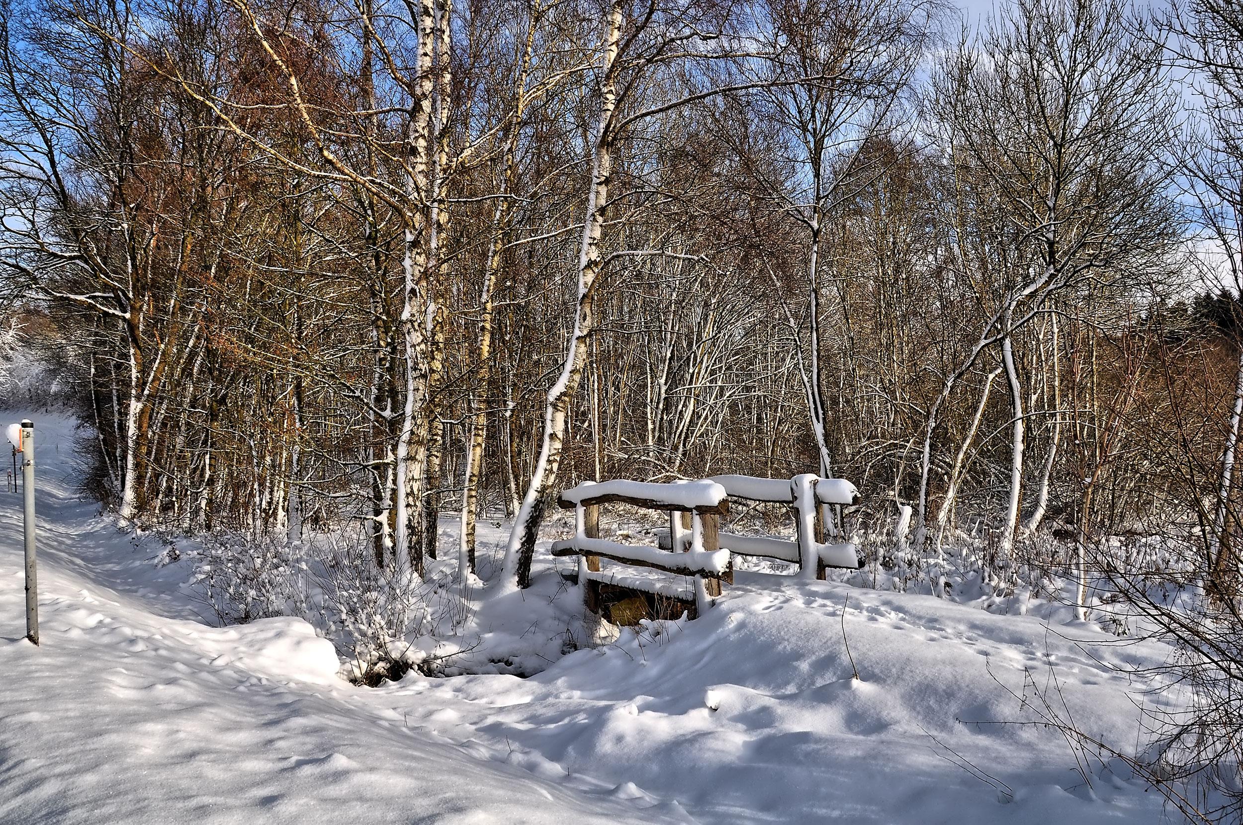 Winterwanderung durchs Sammetbachtal am Holzmaar