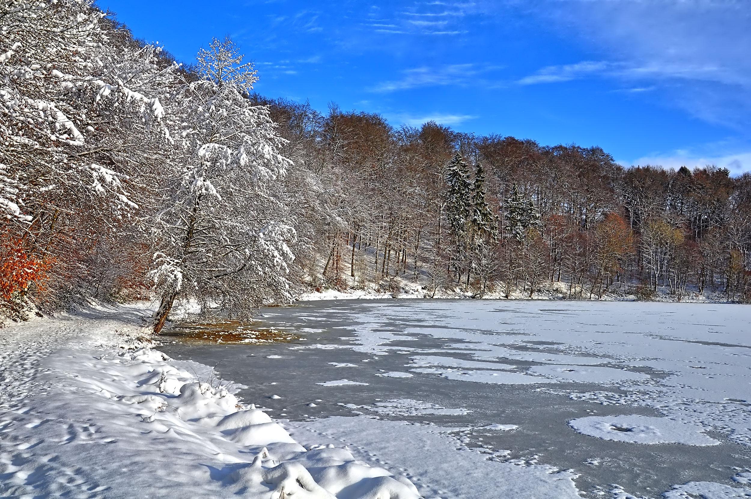 Winterwanderung durchs Sammetbachtal - Am Holzmaar
